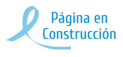 Pag-construccion_23_10_2013